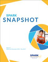 Spark Snapshot cover